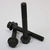 Washer head bolt