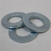 Sae flat washer